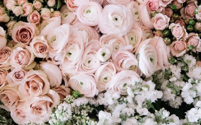 4 fiori perfetti per un matrimonio in primavera